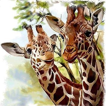 Diy 5d Diamant Gemälde Kit Kristall Bohrermalen Nach Zahlen Giraffe