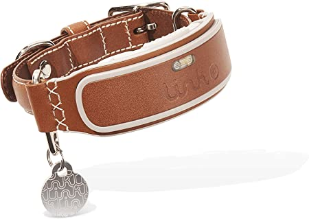 Amazon Com Link Akc Smart Dog Collar Gps Location Tracker Activity Monitor And More Leather Medium Kittn02 Pet Supplies