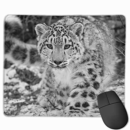 0e69c191a8912 Amazon.com : Funny Snow Leopard Animals Mouse Pad Customized ...