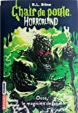 Horrorland, Tome 17: Le magicien d'Ooze