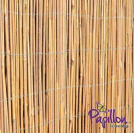 Canisse en caña de bambú - 4m x 1,5m: Amazon.es: Bricolaje y herramientas