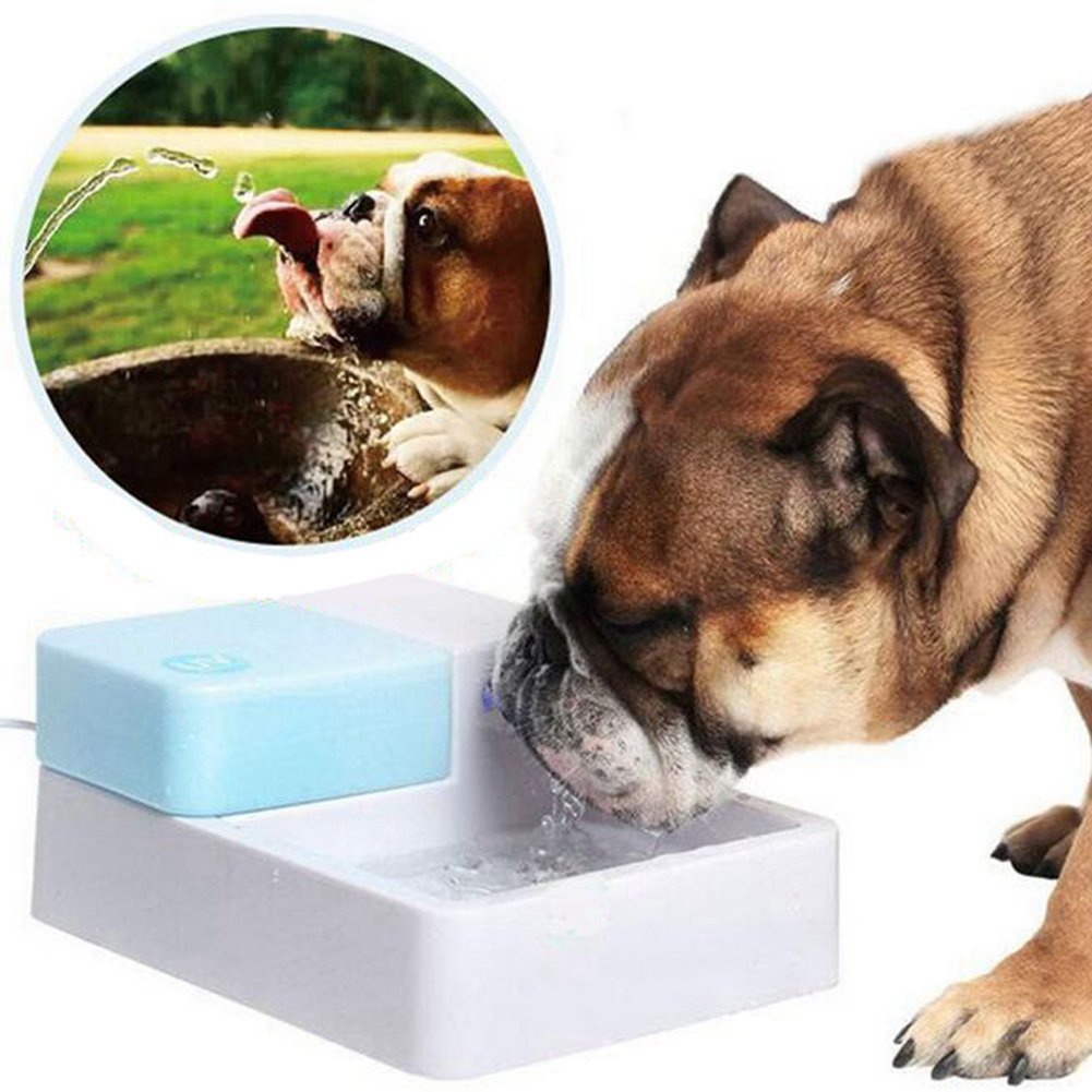 QWERT Co. WANG Pet Water Fountain Dog Cat Automatic Electric Drinking Bowl With LED Light Automatic Fresh Water Flow With 2 Filters