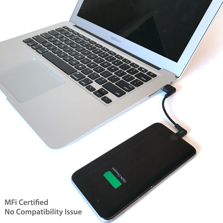 Zeskit Lightning auf USB Kabel Pro für tragbare: Amazon.de: Elektronik