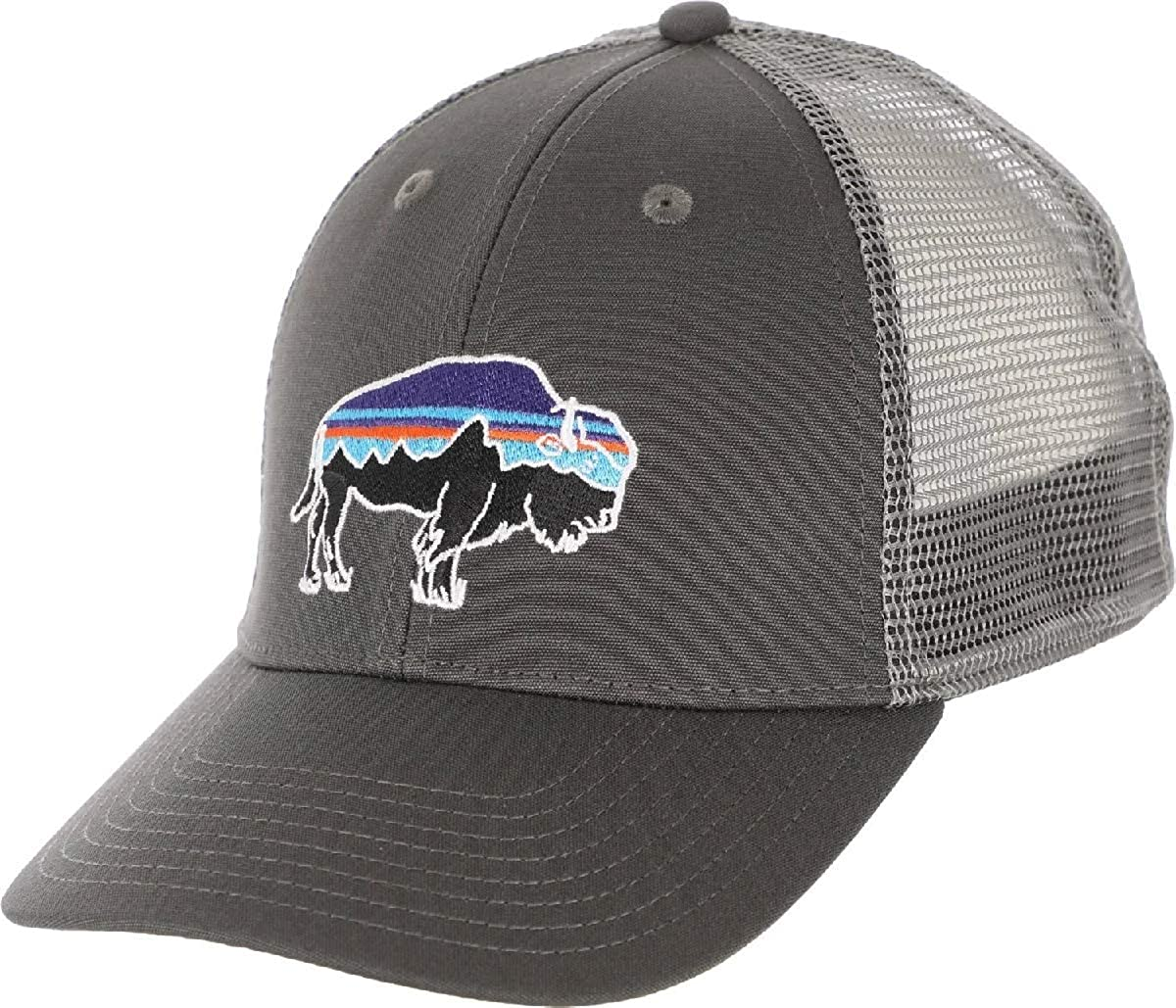 d9883f492 Patagonia Fitz Roy Bison LoPro Trucker Hat (Forge Grey w/Feather ...