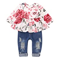 Girls Clothes Outfits, Cute Baby Girl Floral Short Sleeve Pant Set Flower Ruffle Top