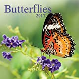 Turner Photo 2017 Butterflies Photo Wall Calendar, 12 x 24 inches opened (17998940010)