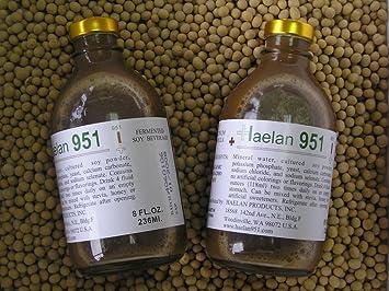 Amazon.com: haelan 951 de soja Bebida Caja con 20 Botellas ...