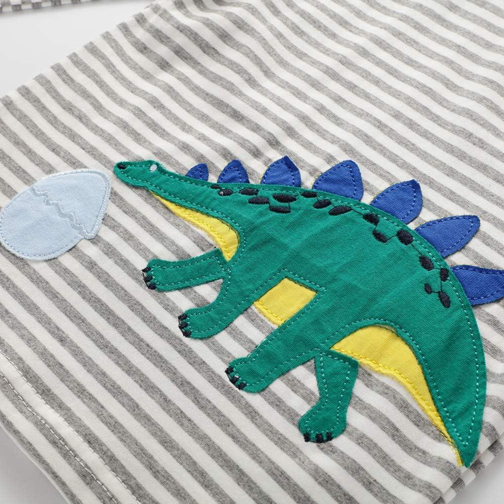 BEILEI CREATIONS Boys Sweatshirts Cotton Cartoon Kids Long Sleeves T-Shirt Autumn