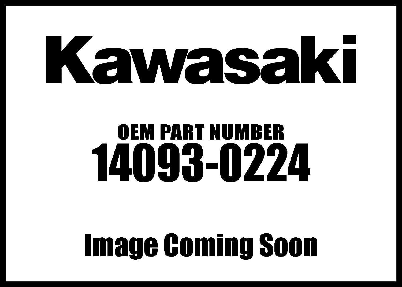Amazon.com: Kawasaki 2015-2018 Ninja 300 Versys X 300 ...