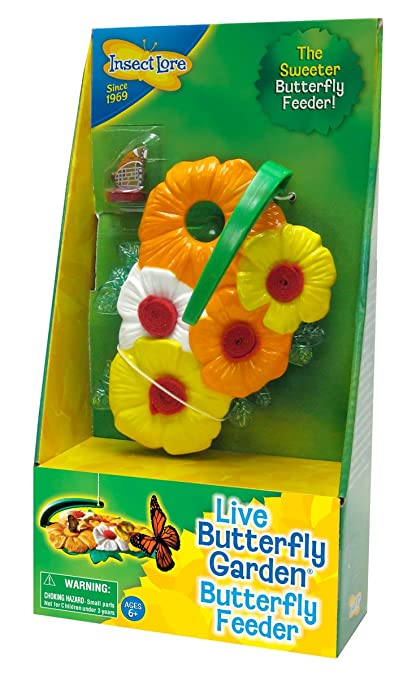 Amazon.com: Insect Lore Butterfly Feeder Kit – Garden Toy Includes ...