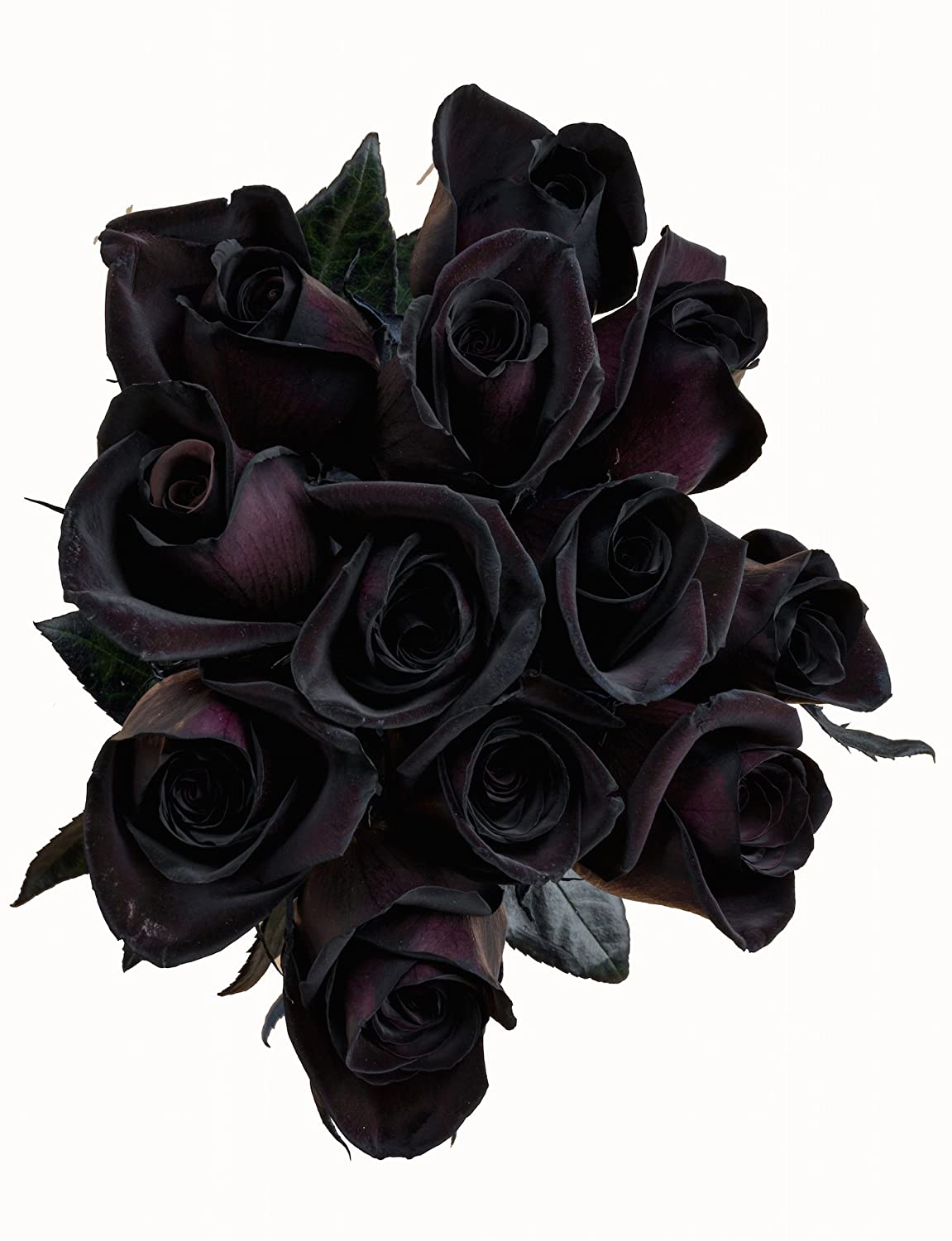 Amazon.com : Flower Explosion Black Roses Bouquet by Real Fresh ...