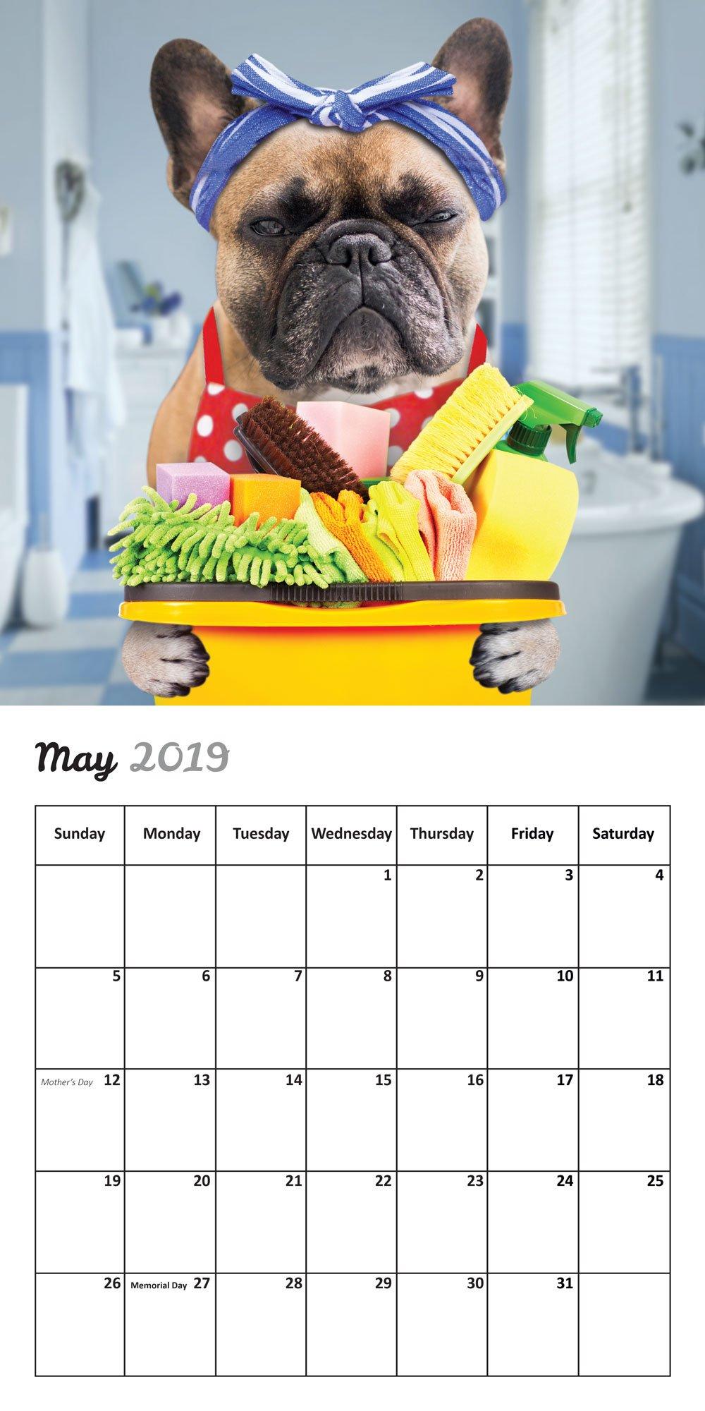 Fun Frenchies 2019 French Bulldog Wall Calendar by Fun Pugs (Image #2)