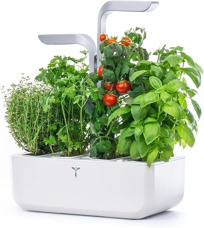 Véritable Smart Edition - Jardín hidropónico de Hierbas (Incluye 4 ...