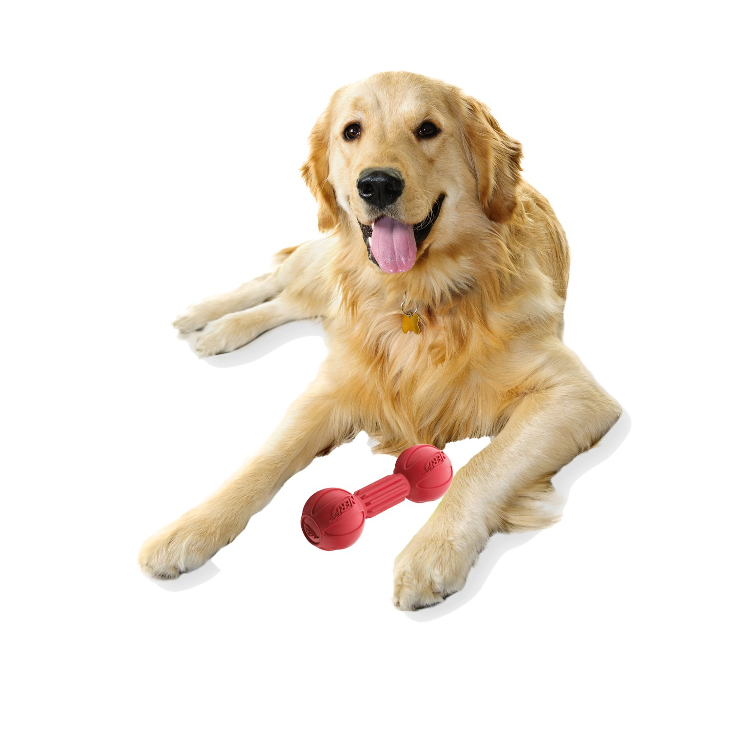 Nerf Dog Barbell Chew Dog Toy, Large, Red by Nerf Dog
