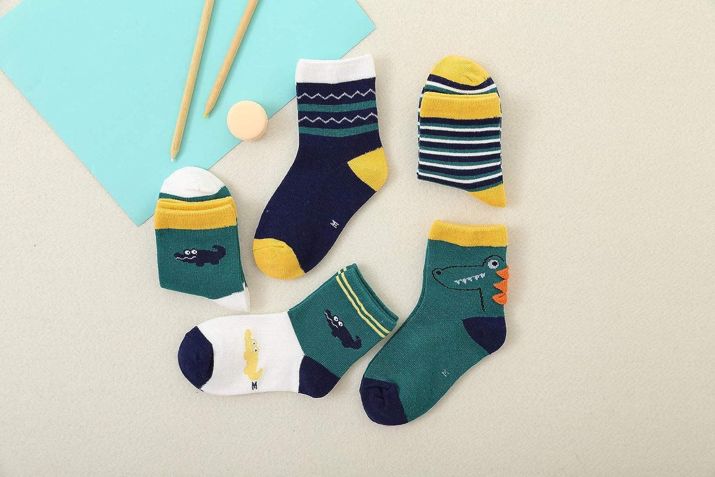 Gifts for Boys Toddler Dinosaur Cotton Crew Socks for Little Kids
