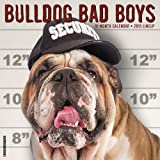 Bulldog Bad Boys 2019 Wall Calendar