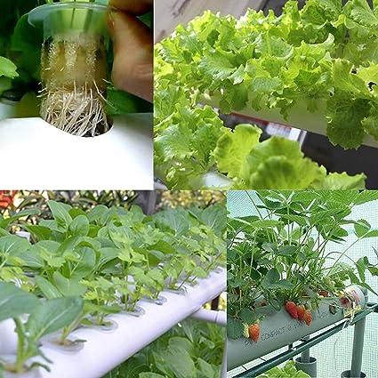 HUKOER Kit cultivador, Auto Kit de riego Cloner DIY que planta72 ...