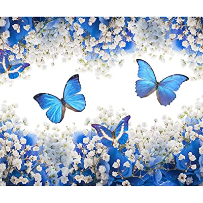 TianMaiGeLun Full Drill 5d Diamond Painting Kits Cross Stitch Craft Kit New DIY Kits for Kids Adults Paint by Number Kits (Butterfly, 25x30cm, Round Drill): Toys & Games [5Bkhe2004158]