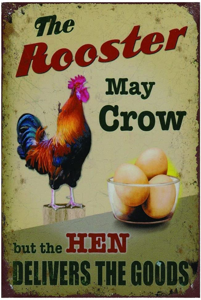 The Rooster May Crow But The Hen Delivers The Goods Retro Vintage Chic Metal Sign 7X10 Inch