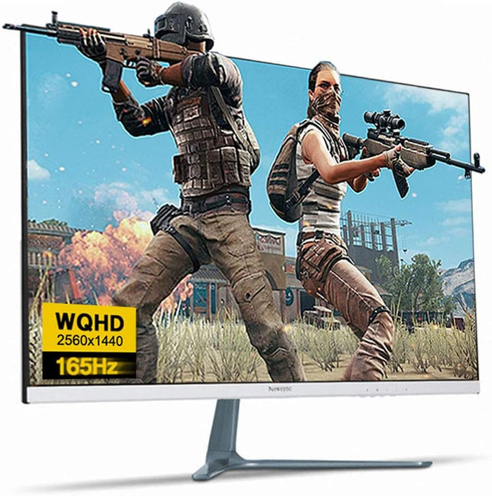 NEWSYNC 27 inch Real 165Hz (DP) 144Hz (HDMI) 1ms 2560x1440 WQHD LED Gaming Monitor (AMD FreeSync, Crosshair Target, Flicker-Free, Low Blue Light, Zero Bezel) DisplayPort, HDMI, DVI (B27Q165 Shooting)
