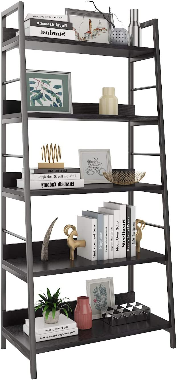 Amazon Com Himimi 5 Shelf Ladder Bookcase Industrial Bookshelf Wood And Metal Bookshelves Plant Flower Stand Rack Book Rack Storage Shelves For Home Decor Furniture Decor