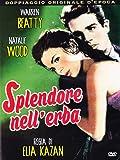 splendore nell'erba dvd Italian Import