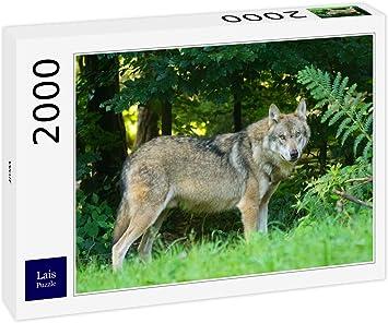 Lais Puzzle Lobo 2000 Piezas: Amazon.es: Juguetes y juegos
