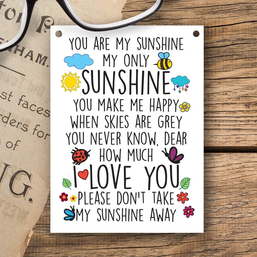 Dorothy Spring Targhetta in Metallo Scritta in Inglese Decorazioni da Appendere You Are My Sunshine 7,5x10cm