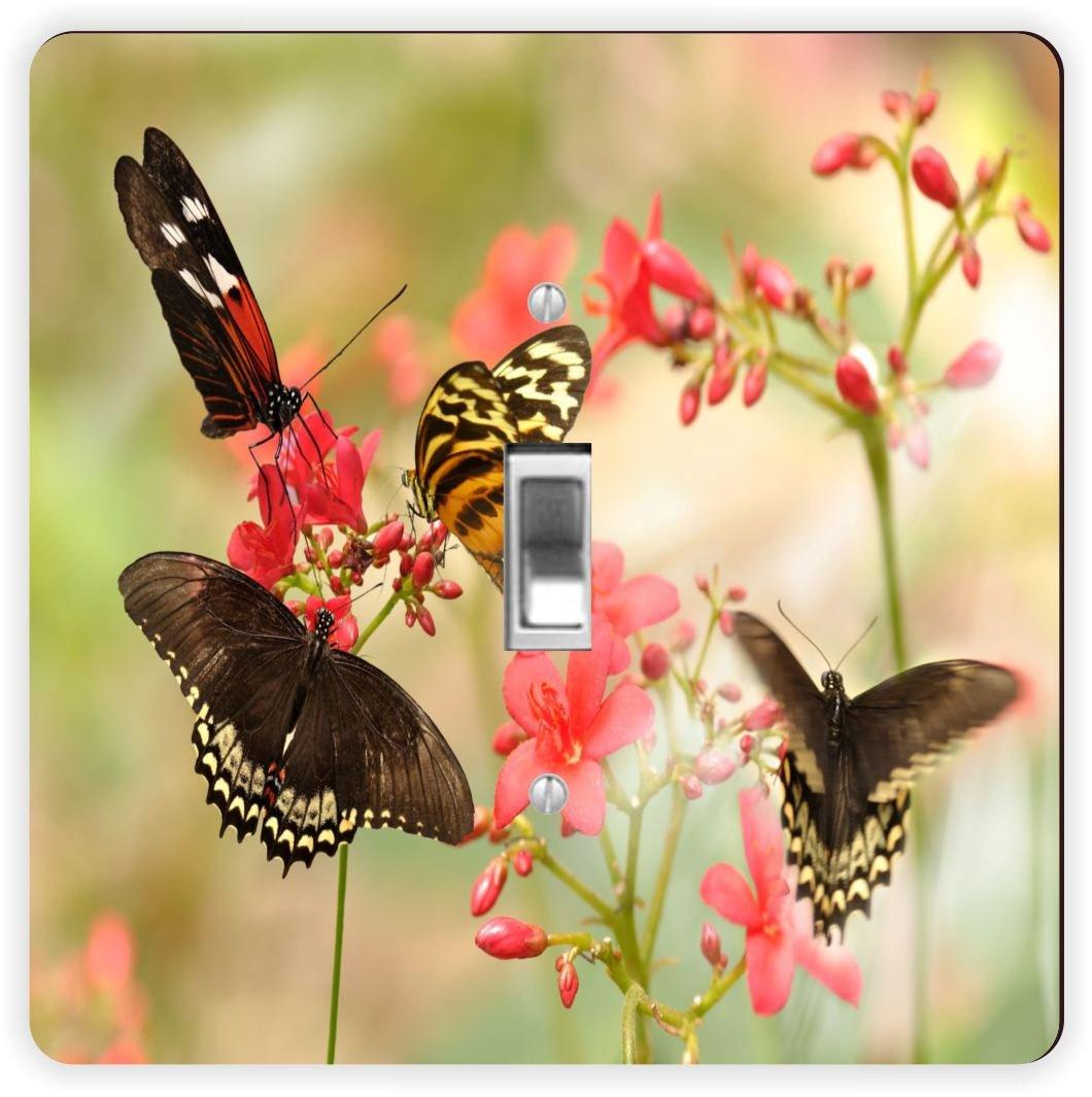 Rikki Knight Tropical Butterflies-Single Toggle Light Switch Plate RK-LSPS-941