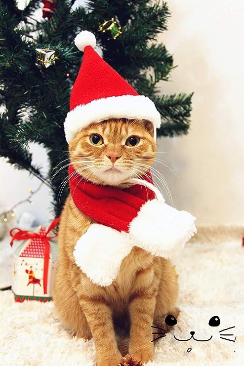 Smoro Perro Gato Gorras Mascota Santa Sombrero cumpleaños Bufanda y Collar Pajarita Traje de Navidad para Cachorro Gatito pequeños Gatos Perros ...