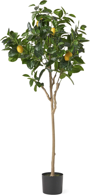 Christopher Knight Home Wallowa Artificial Lemon Tree, 5' x 2', Green, Yellow, Black