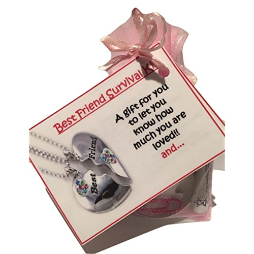 bagsoflove gifts best friend survival kit friendship gift best friend bff birthday unique - Christmas Gifts For Best Friend