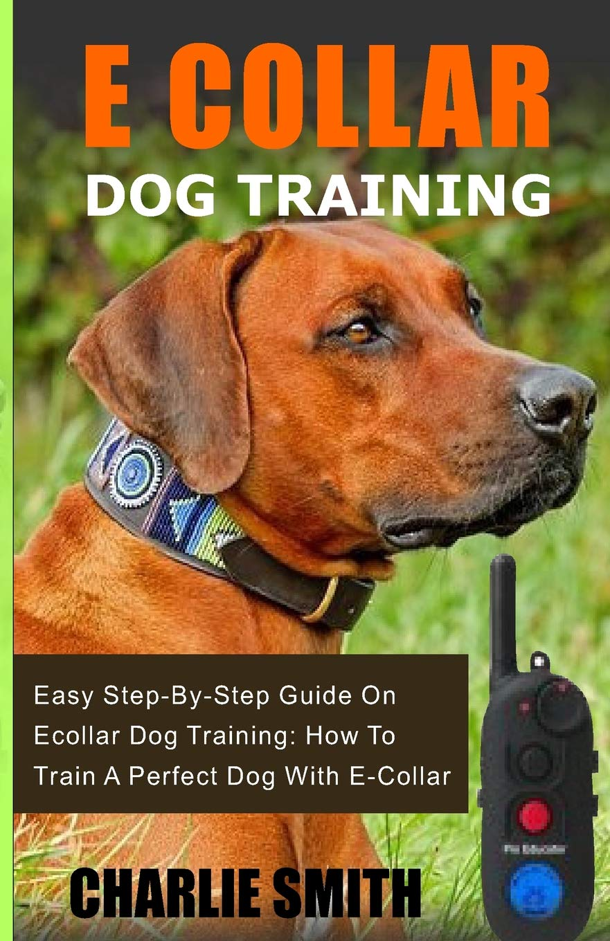 E Collar Dog Training