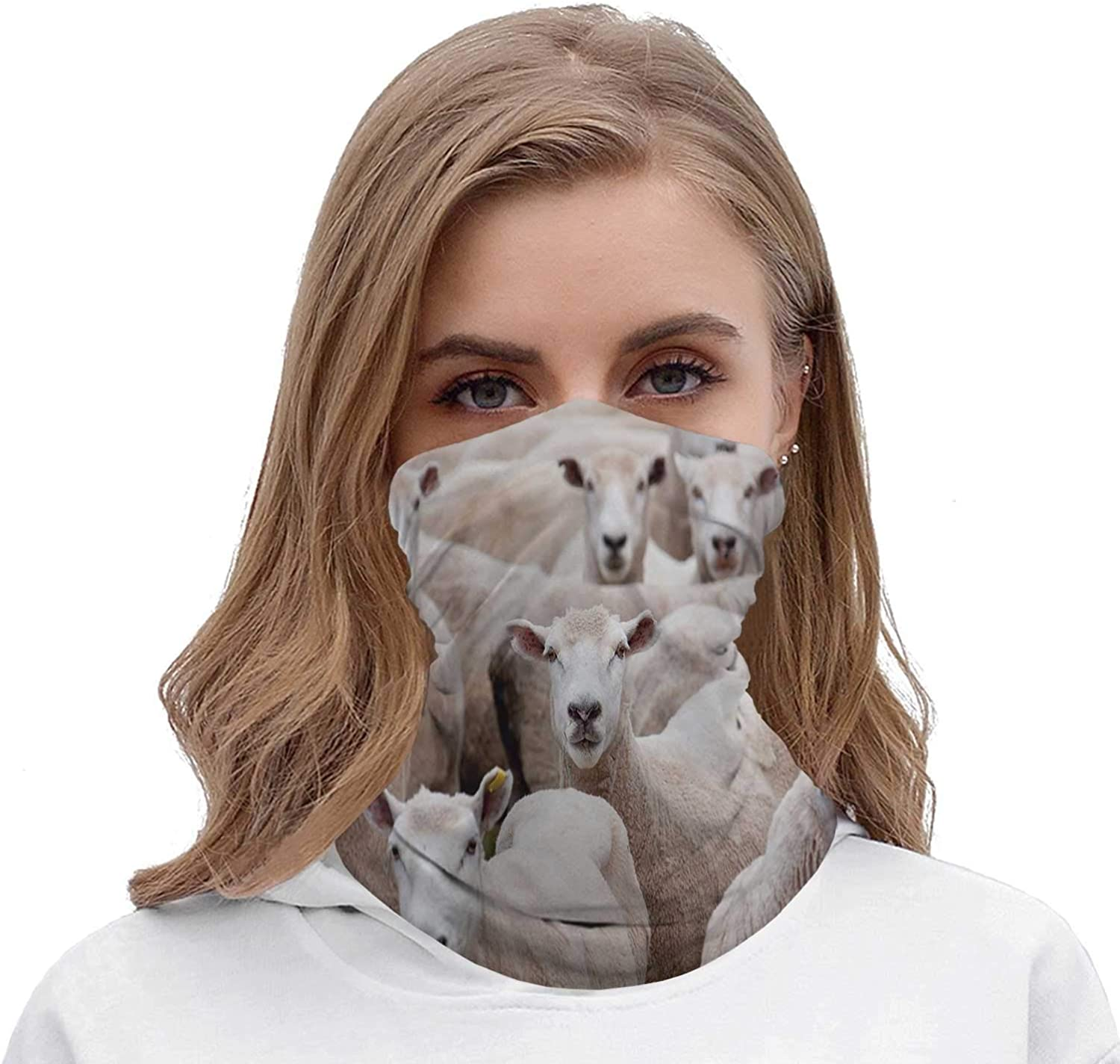Hitecera A Herd of Sheep Staring at The Camera/Herd,Multifunctional wear Mouth Cover Neck Gaiter