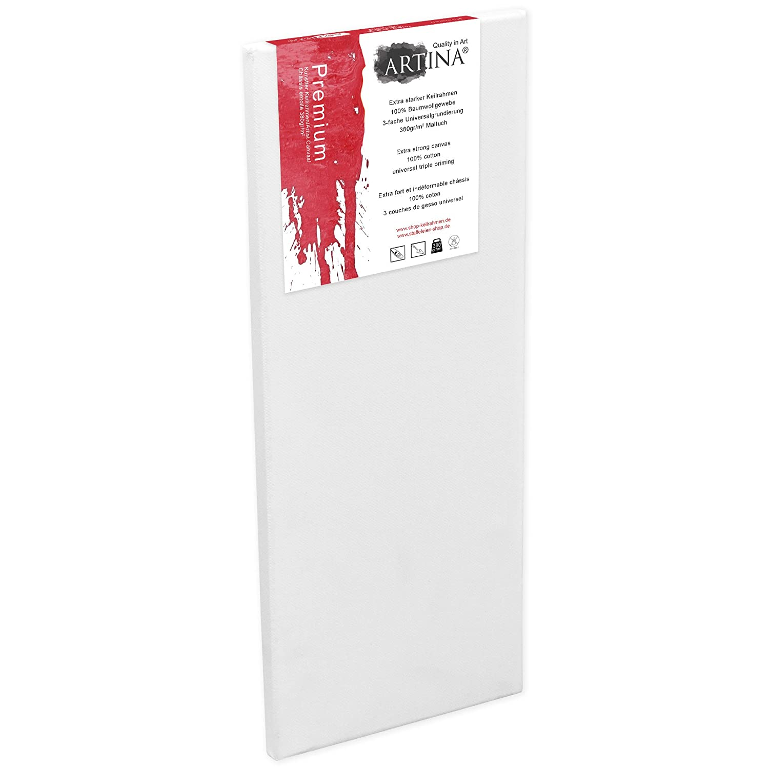 Artina Art Canvases 40 x 120 cm Stretched & Triple Primed Premium Quality Artist Blank Canvas Bulk 16 x 47 Inch