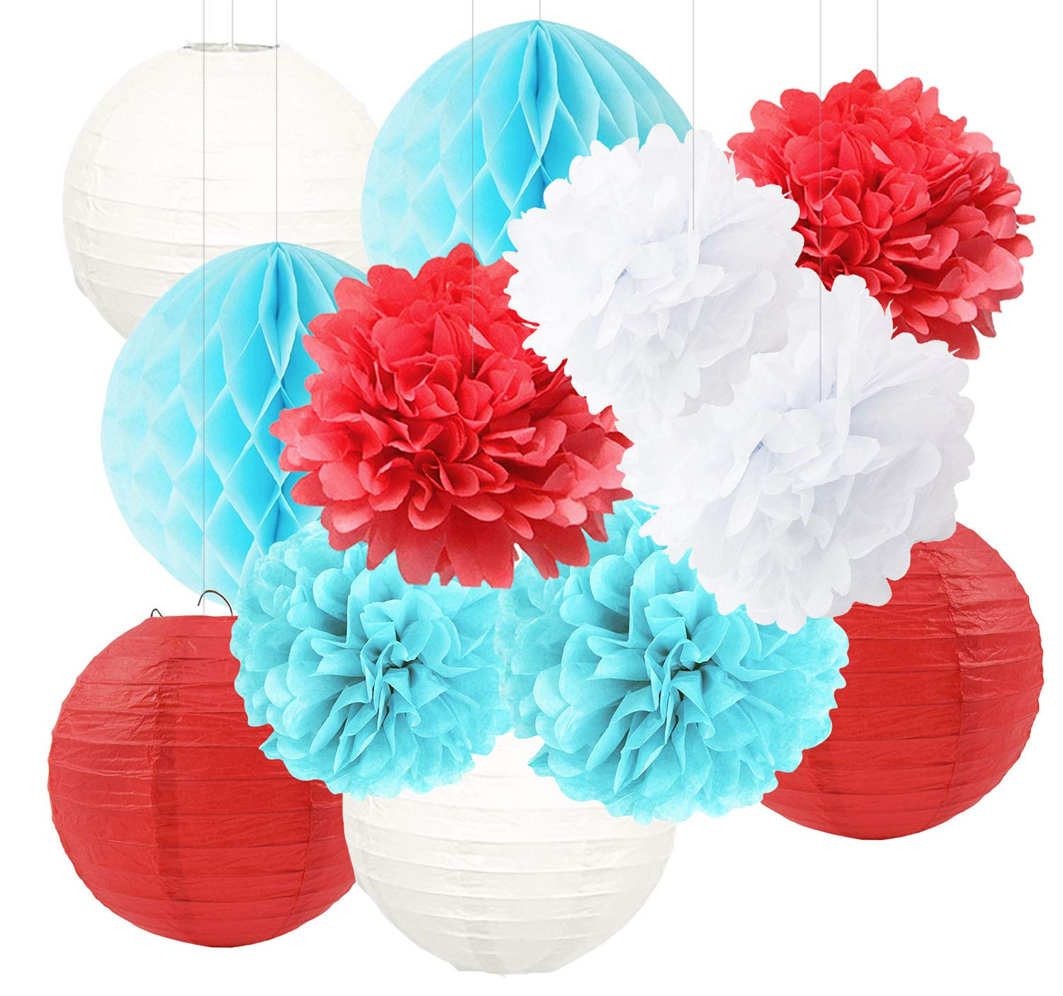 Dr Seuss Cat in The Hat Party/Dr Suess Decor Blue White Red Tissue Paper Flower Paper Lanterns Honeycomb Balls/Dr. Seuss Birthday Decorations/Circus Carnival Party Decorations/Turquoise Red Wedding