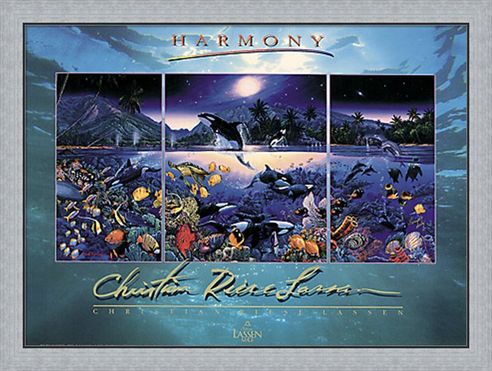 Harmony [foil] by Christian Lassen Framed Art Print Wall Picture, Flat Silver Frame, 39 x 30 inches