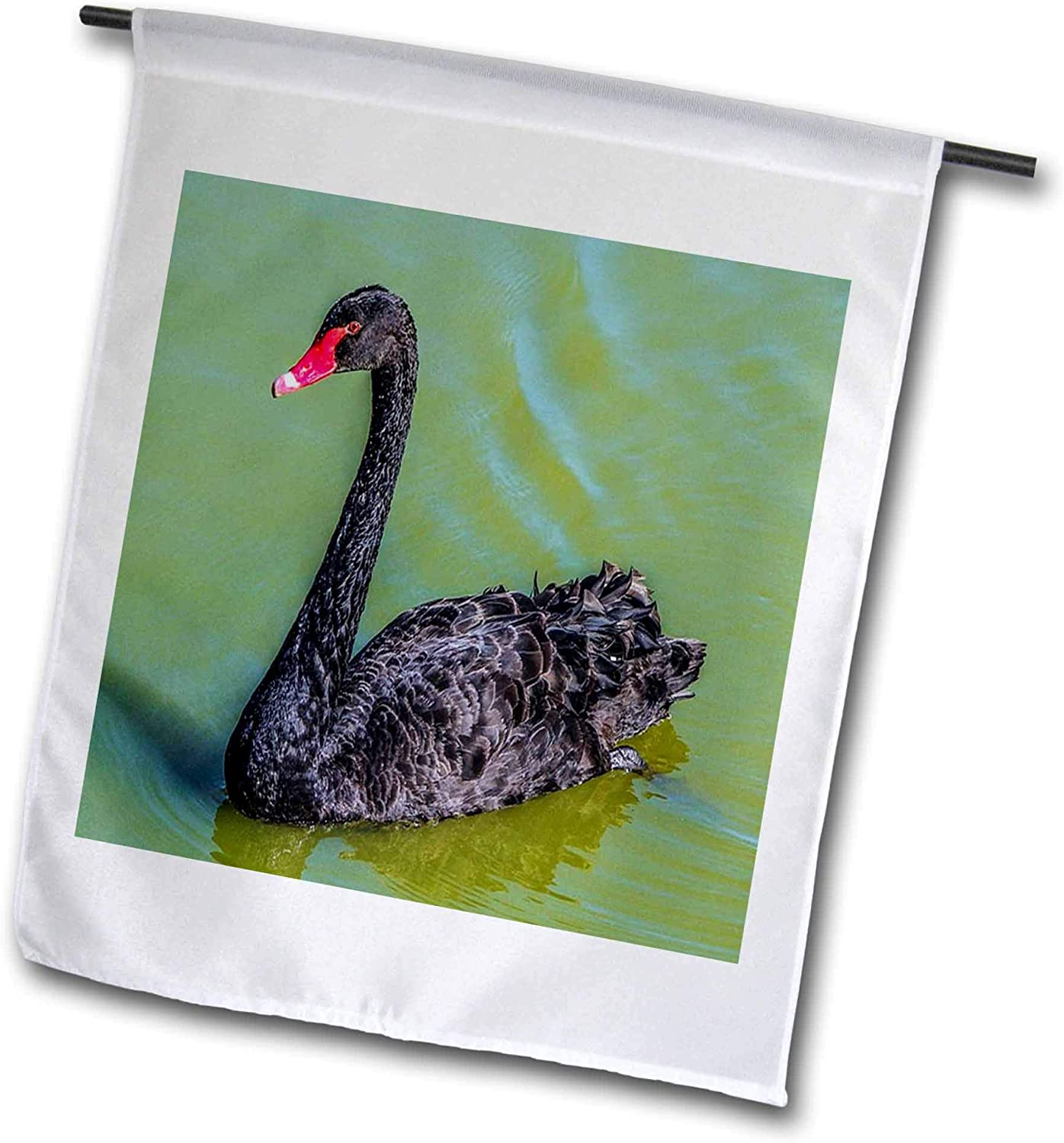 3dRose Lens Art by Florene - Beautiful Birds - Image of A Black Swan on Green Lake - 12 x 18 inch Garden Flag (fl_318951_1)