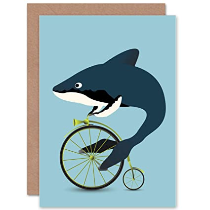 Amazon Wee Blue Coo New Whale Shark Bicycle Penny Farthing