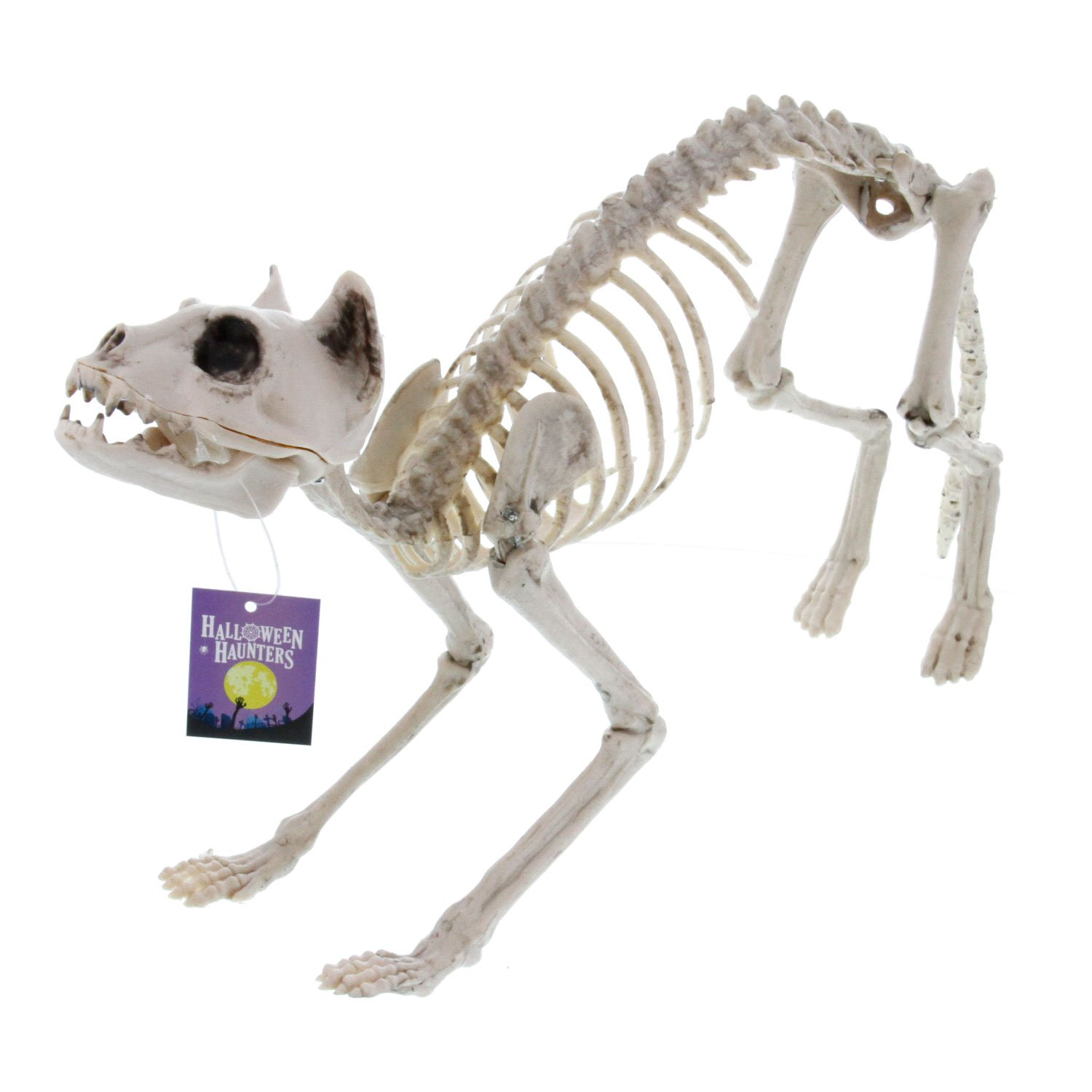Halloween Haunters Life Size Skeleton Kitty Cat Prop Decoration - Scary 10'' High x 21'' Long Creepy Haunted House Kitten
