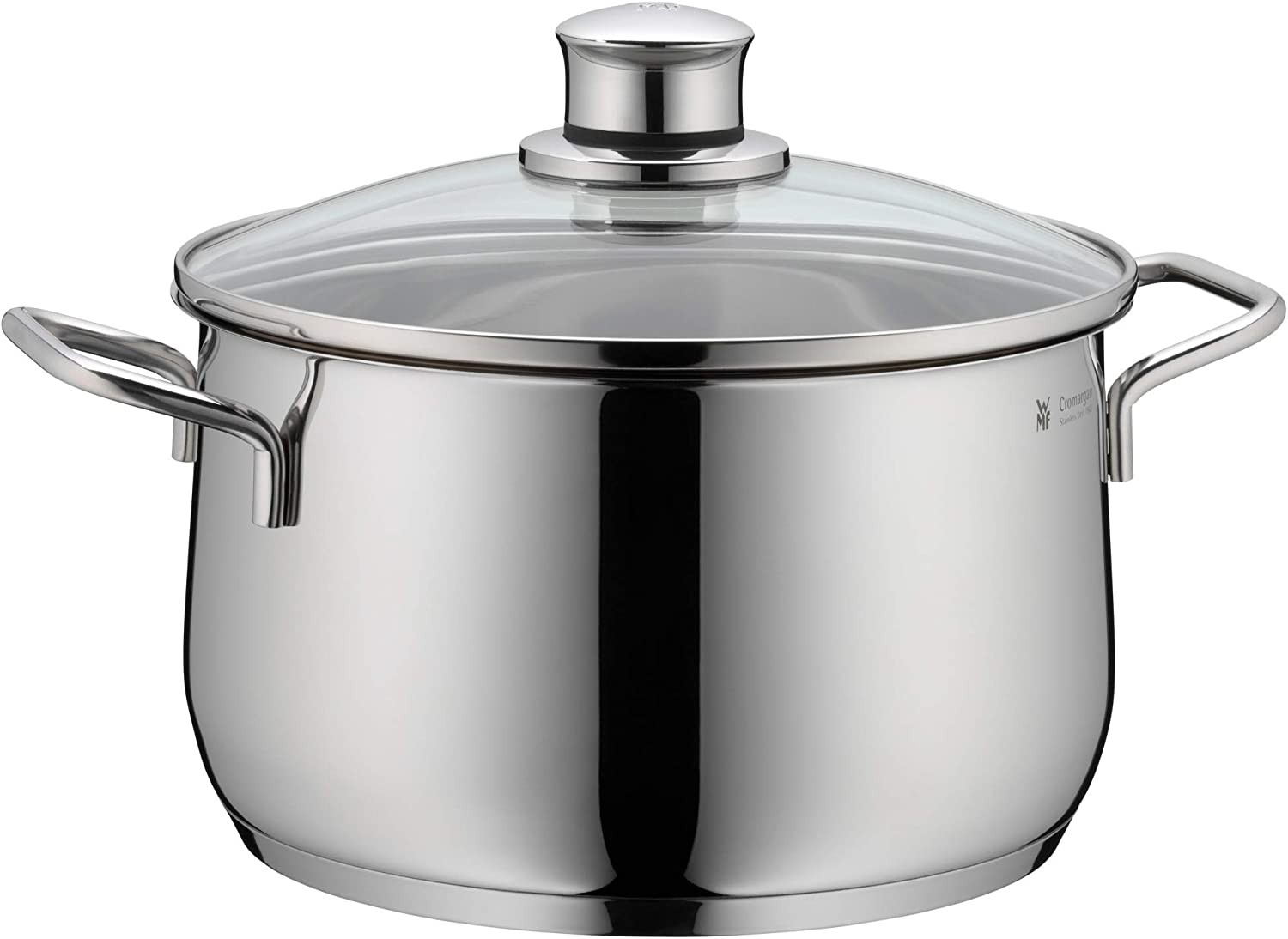 WMF stainless steel pots