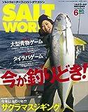 SALT WORLD(ソルトワールド) 2019年6月号