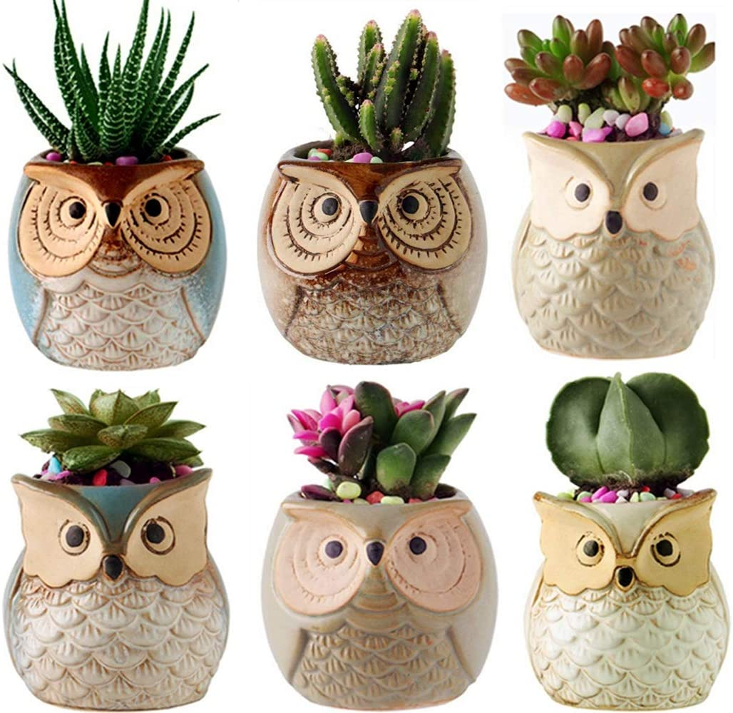 Gifts for Women,2.5 Inch Owl Succulent Plants Pots,Office Decor,Plant Pots Pack of 6