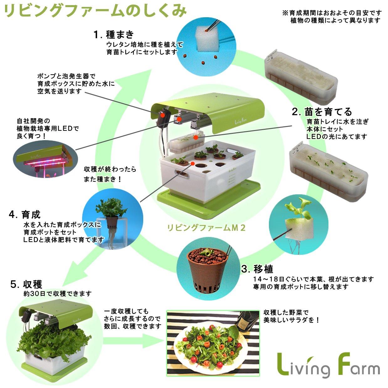 水耕栽培キット リビングファーム