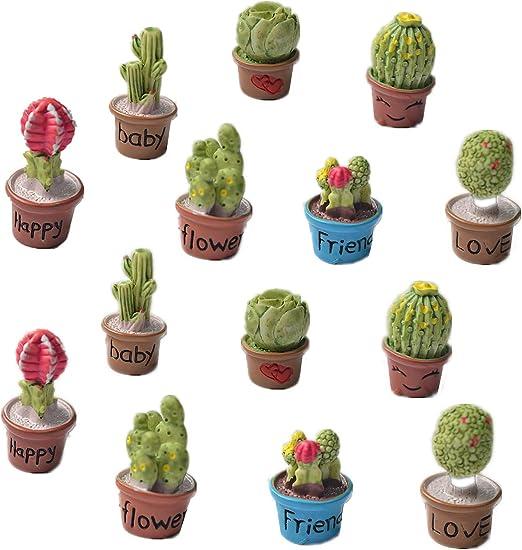 Zhiheng Set de 14 cactus maceta plantas suculentas mini jardín hada jardín Kit de accesorios de