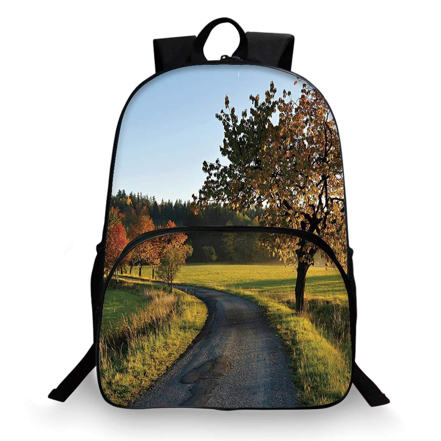 Landscape Various Schoolbag,Autumn Road at Sunset and Lone Tree Grass Field Forest Rural Scenery for student,11''Lx6''Wx15''H by C COABALLA