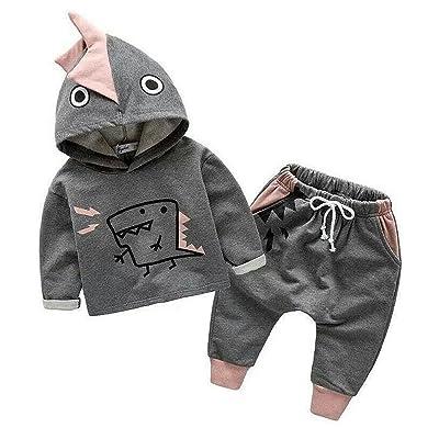 Kids Baby Boys Long Sleeve Cartoon Dinosaur Hoodie Tops Long Pants Sets Outfits