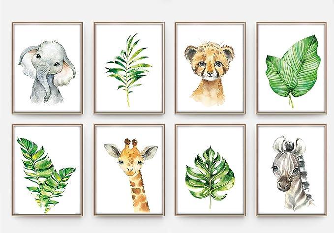 Animaux de safari dans la jungle tropical Girafe /él/éphant z/èbre tigre P37 d/écoration chambre fille gar/çon artpin/® eu de 8 posters pour chambre de b/éb/é//denfant DIN A4 Sans cadre