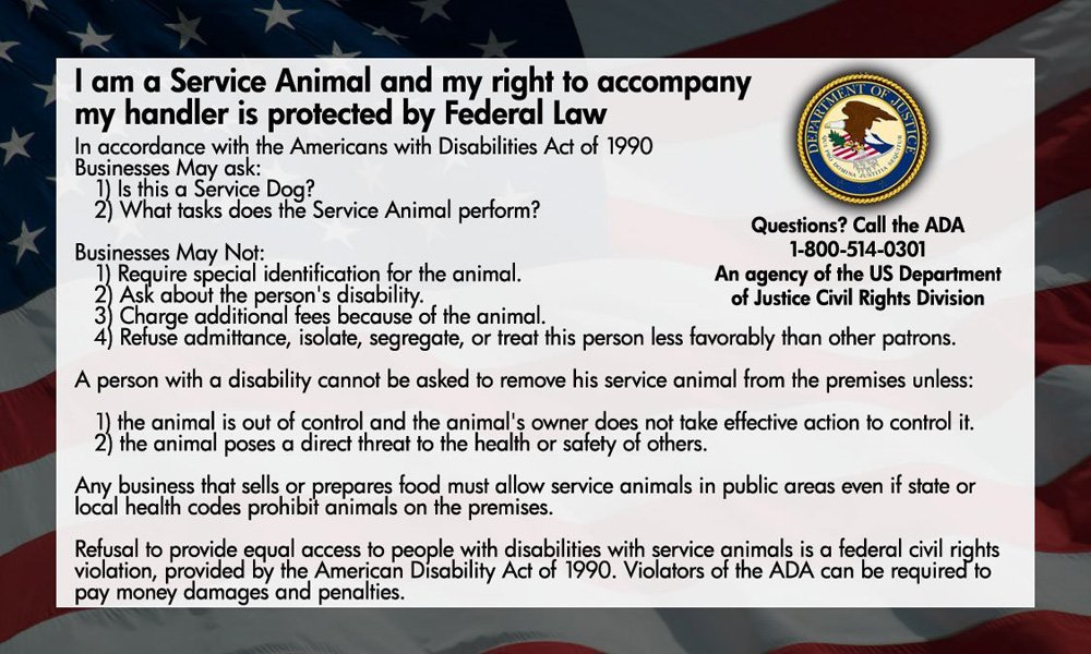 Service Dog Cards - 50 ADA Service Dog Information Cards State Your Rights