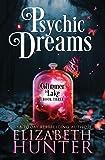 Psychic Dreams: A Paranormal Women's Fiction Novel (Glimmer Lake)